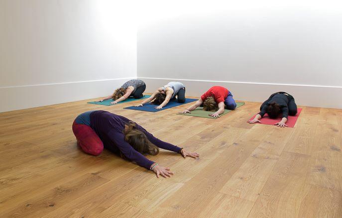 Little Bird Yoga Dublin